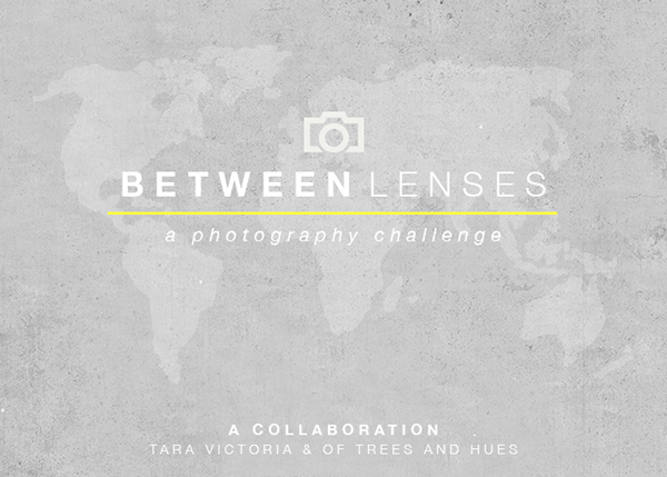 Between Lenses
